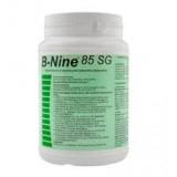 B-NINE 100G